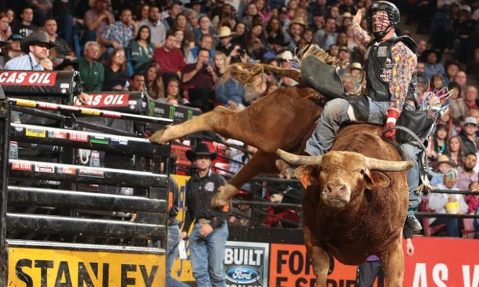 The 25th PBR: Unleash The Beast Series: PBR - Professional Bull Riders at Madison Square Garden